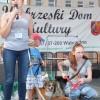 Adoptuj bezdomnego czworonoga - Schronisko w Grudziądzu (2)
